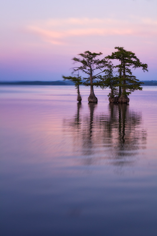 Reelfoot Lake at dusk